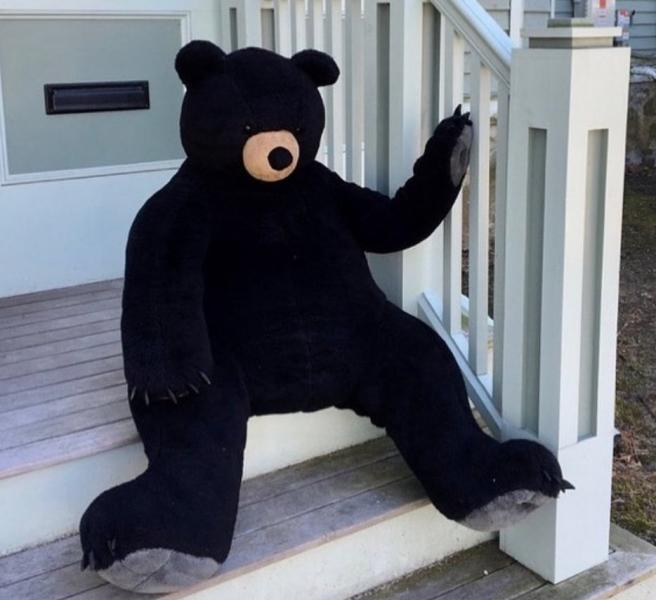 Bruno the Bear sitting on the steps of Chris and Kathy's house!